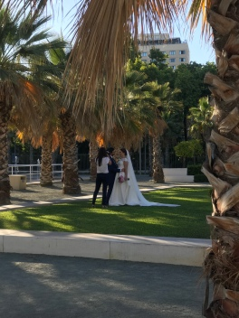 Walking home from the beach, saw a wedding shoot. Impossible to see this and not smile and be happy. Love really is the best!!