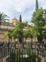 There's a lovely courtyard with orange trees as you enter/exit from the north side.