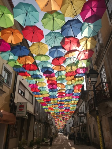 The umbrella project is so frickin cool!! Several streets in the downtown area are covered with these colored umbrellas. Love!!
