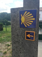The direction the shell is pointing is the direction you're supposed to walk. The arrow is the direction you're supposed to walk. This was the one place along the Camino that totally confused me.