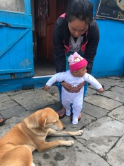 Dipshina meeting Kushi. My heart melted. This dog was SO good with babies.