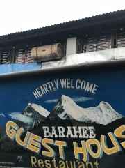 "Two things: (1) Nepalis think ""heartly"" is a word; and (2) that is a beehive in the window of the lodge."