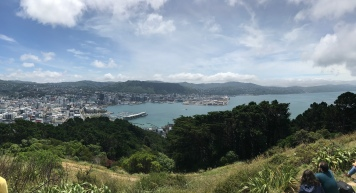 Views from the top of Mt. Victoria!